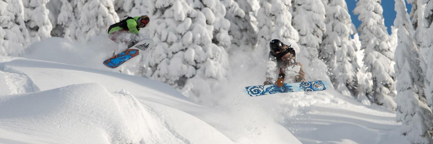 Shop the 2020-2021 line of Lib Tech Snowboards