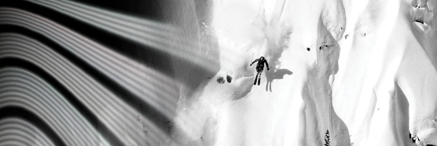 Shop 2019-2020 Lib Tech Skis